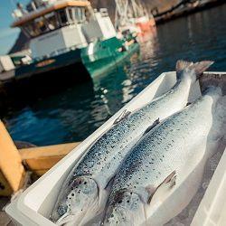 ShabuShabu stapt over naar duurzame vis